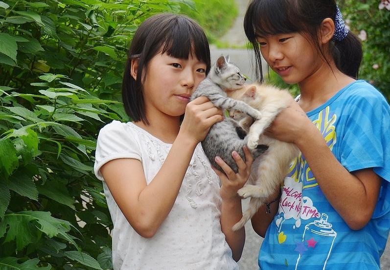 [無断転載禁止] 【JS】女子小学生 低学年画像スレPart4【JS】©bbspink.com->画像>4295枚